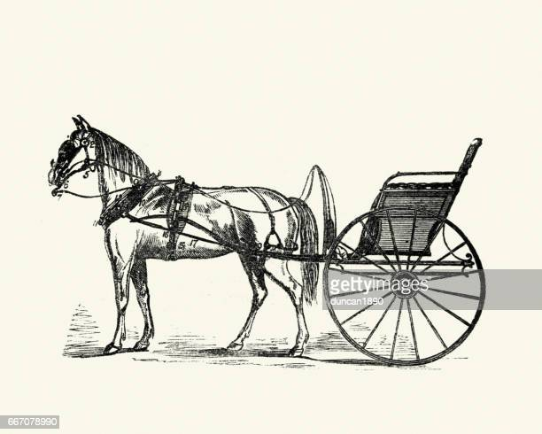 victorian trap (carriage), 19th century - pony stock illustrations, clip art, cartoons, & icons