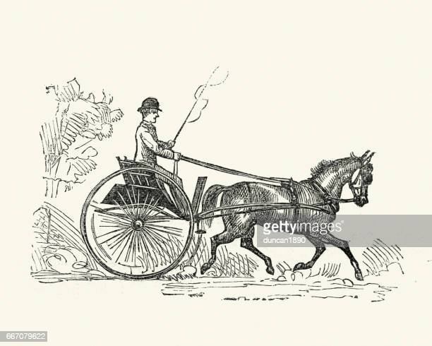 victorian trap (carriage), 19th century - horsedrawn stock illustrations, clip art, cartoons, & icons