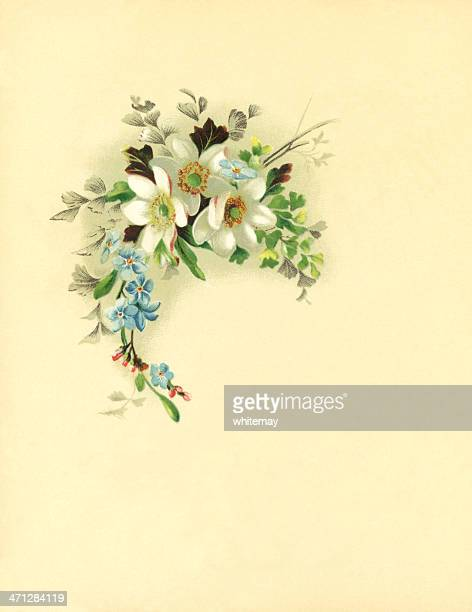 Victorian watercolour spray of flowers on cream background