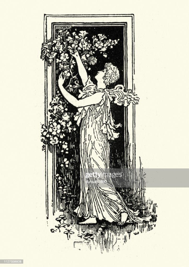 Victorian woman picking flowers, 19th Century : stock illustration