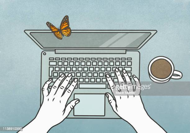 view from above butterfly landing on laptop - food and drink stock illustrations