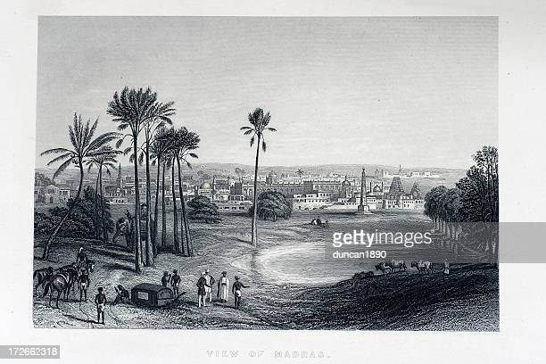 view of madras - tropical tree stock illustrations