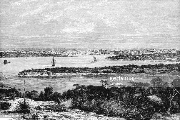 view of sydney harbour, australia, in the late 19th century - sydney stock illustrations