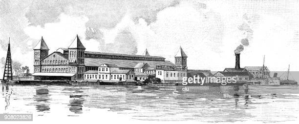view of the landing site on ellis island before the fire catastrophe - ellis island stock illustrations