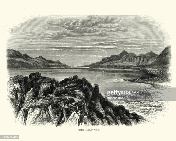 view on the dead sea, 19th century - dead sea stock illustrations