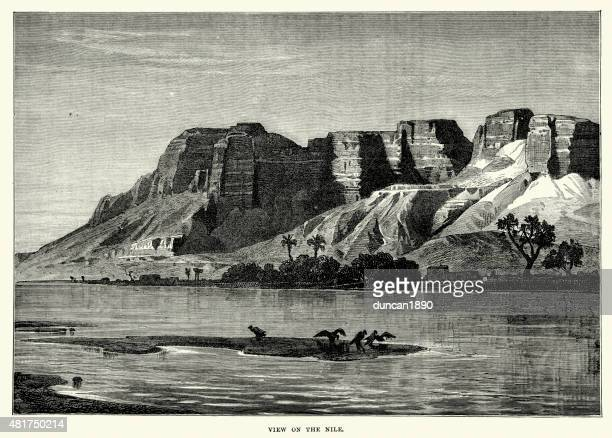 view on the river nile - nile river stock illustrations, clip art, cartoons, & icons