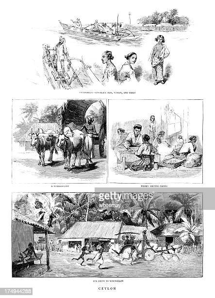 Views of Victorian Ceylon (Sri Lanka)