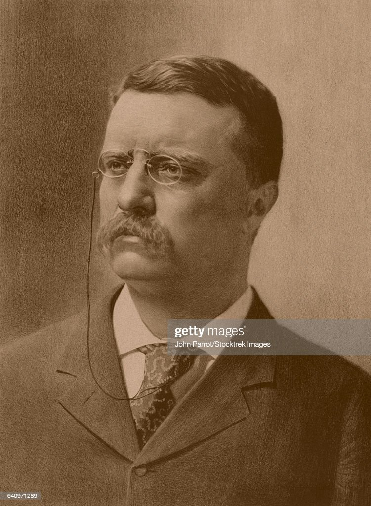 Vintage American history print of a younger President Theodore Roosevelt facing right. : stock illustration