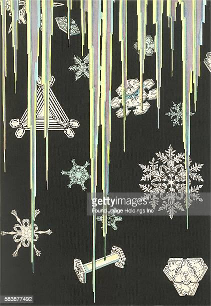 Vintage blackandwhite illustration of microscopic images of snowflakes and icicles 1930s