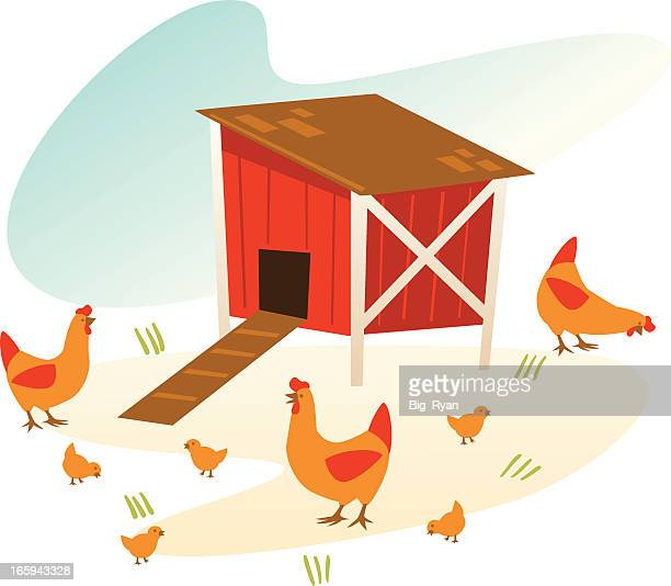 vintage chicken coop - enclosure stock illustrations