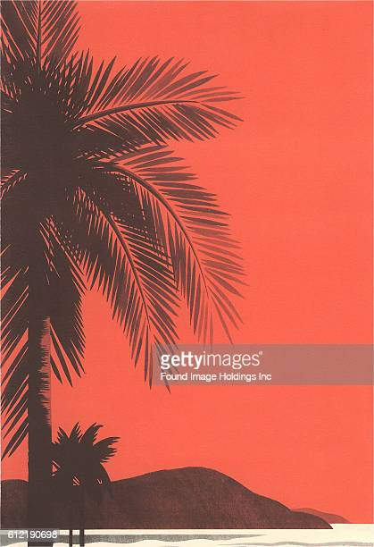 Vintage illustration of silhouetted palm trees at the coast against a red sky