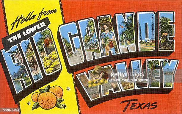 Vintage large letter illustrated postcard images including fresh-picked citrus, just-caught fish, the Rio Grande River, a palm tree-lined boulevard,...