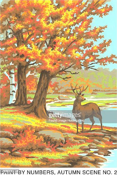 Vintage paint by numbers illustration of a buck standing by a stream in the Autumn 1960s