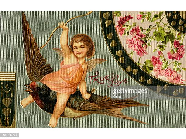 stockillustraties, clipart, cartoons en iconen met a vintage true love valentine with cupid riding a sparrow - cupidon