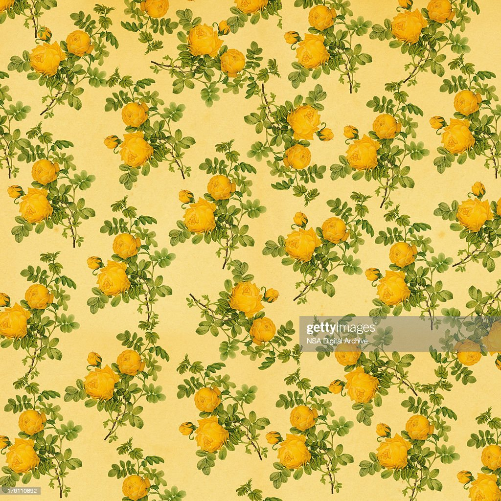 Vintage Wallpaper With Yellow Roses Antique Flower Illustrations