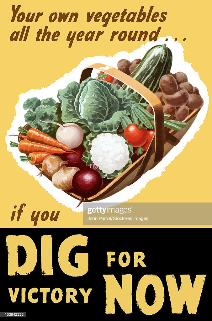 Vintage World War II poster of a basket filled with fresh vegetables. It reads, Your own vegetables all the year round... if you Dig For Victory Now. : stock illustration