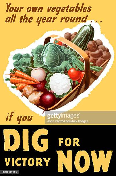 vintage world war ii poster of a basket filled with fresh vegetables. it reads, your own vegetables all the year round... if you dig for victory now. - world war ii stock illustrations