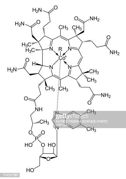 vitamin b12 cobalamin, skeletal formula - chemistry stock illustrations
