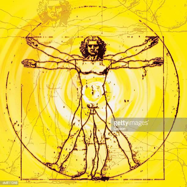 Vitruvian Man By Leonardo Da Vinci C.1490