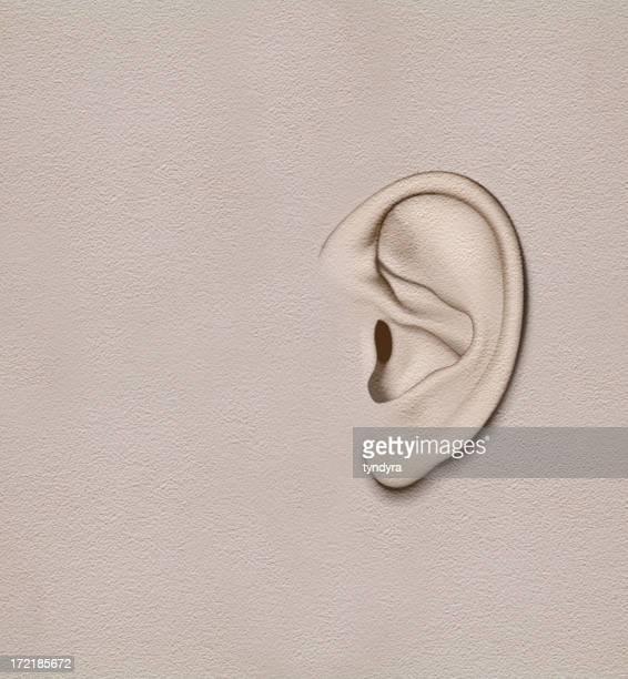 wall that got ears