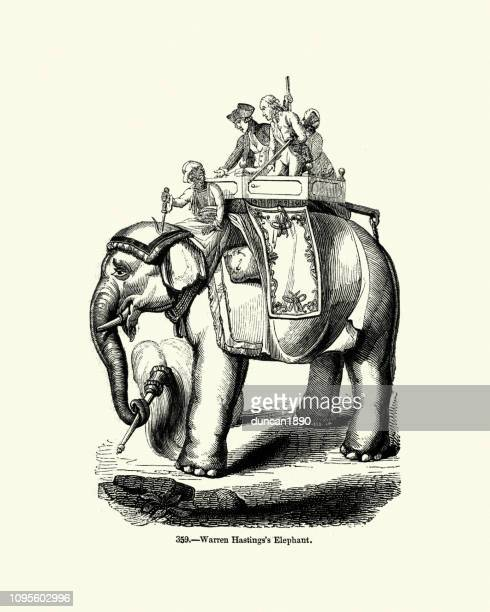 warren hastings's  elephant, india, 18th century - indian elephant stock illustrations