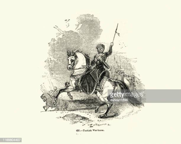 warrior riding a turkish war horse - cavalry stock illustrations