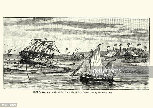 hms wasp, stuck on a coral reef, 19th century - us navy stock illustrations, clip art, cartoons, & icons