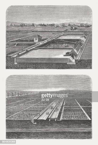 wastewater treatment in paris and its use in agriculture, 1888 - water treatment stock illustrations, clip art, cartoons, & icons