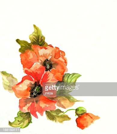 Watercolor And Pencil Painted Floral Border On White Stock Illustration
