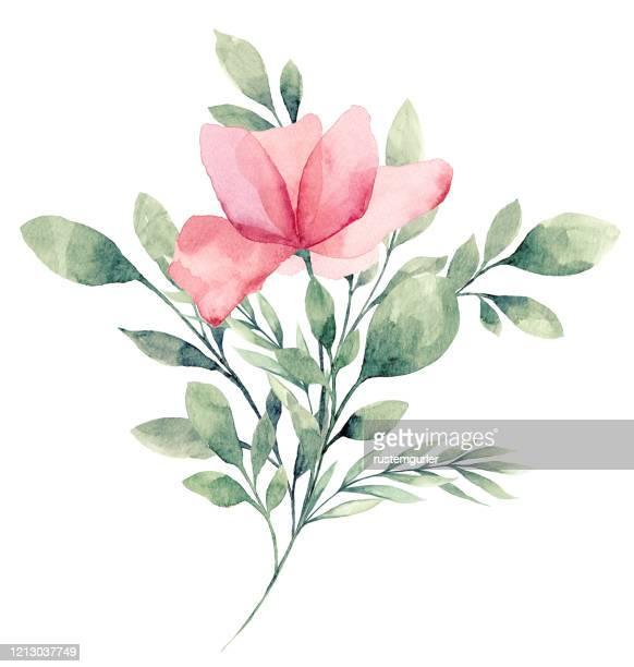 watercolor flower white background - flower arrangement stock illustrations