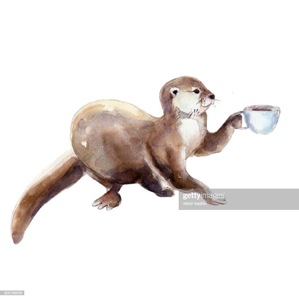 Aquarell Bild Der Otter Mit Tasse Kaffee Stock-Illustration | Getty ...