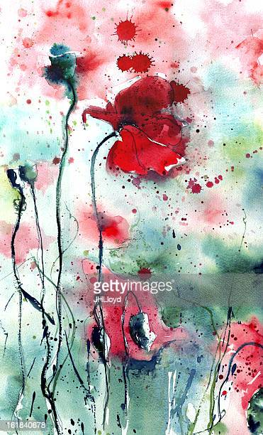 watercolor painted wild poppies - poppy stock illustrations, clip art, cartoons, & icons