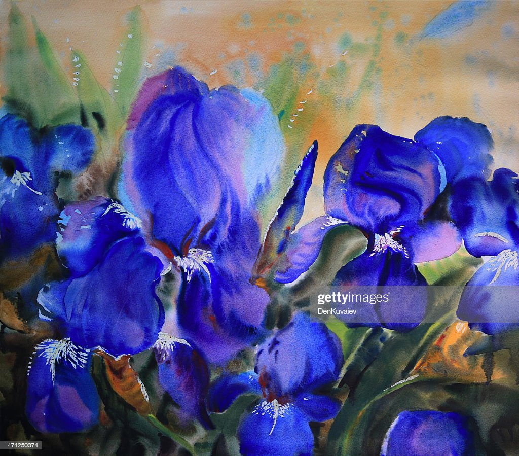Watercolor Painting Of Iris Flowers Stock Illustration Getty Images
