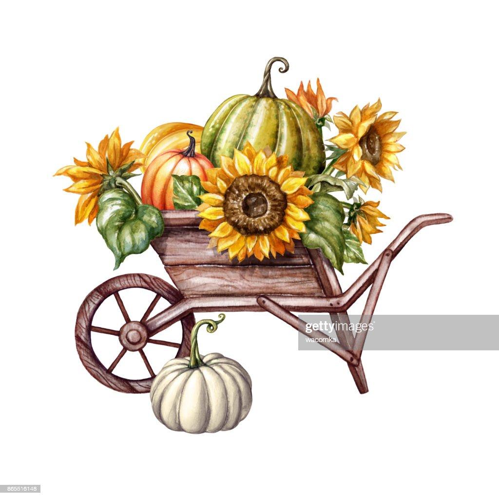Aquarell Kurbisse In Der Schubkarre Sonnenblumen Thanksgiving