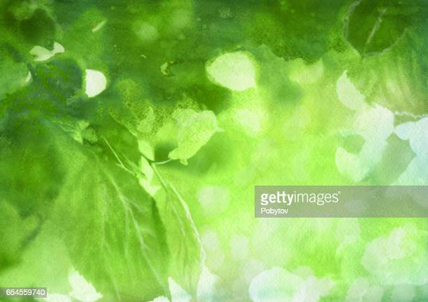 Watercolor spring foliage