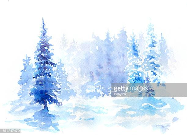 watercolor winter spruce