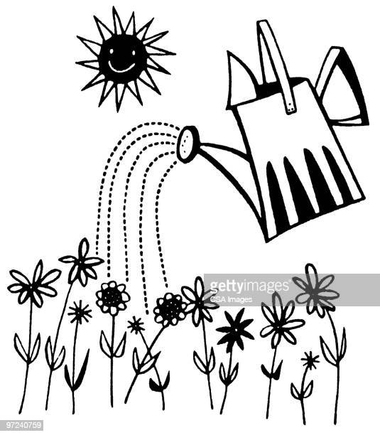 watering can watering garden - black and white stock illustrations