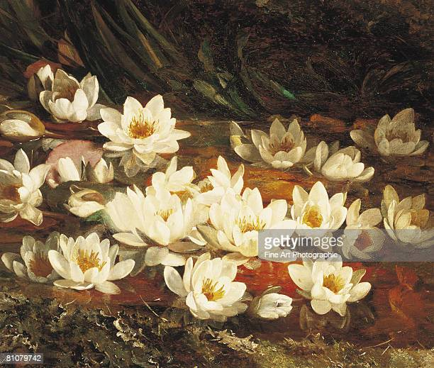 waterlilies - painted image stock illustrations