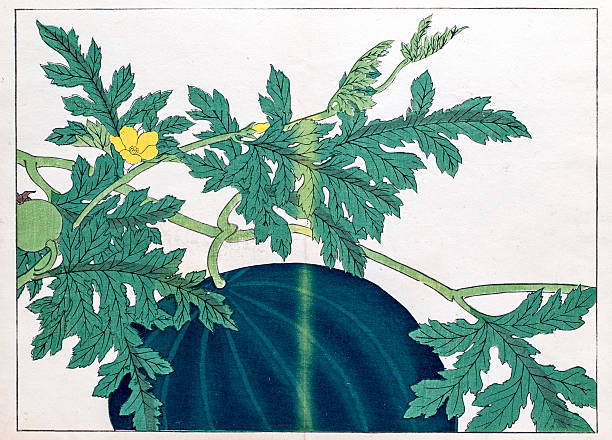 Watermelon Japanese Woodblock Print Wall Art