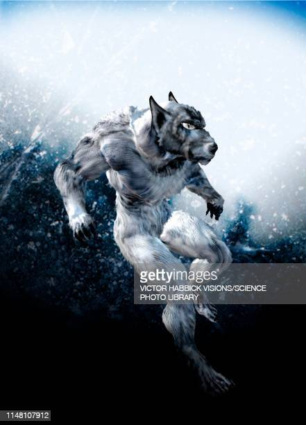 werewolf, illustration - victor habbick stock illustrations