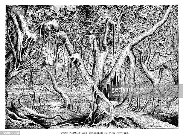 35 Creepy Forest Drawing - Illustrations, cliparts, dessins
