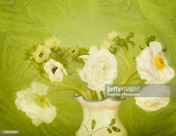 white anemonies and ranunculus - huntington beach california stock illustrations, clip art, cartoons, & icons