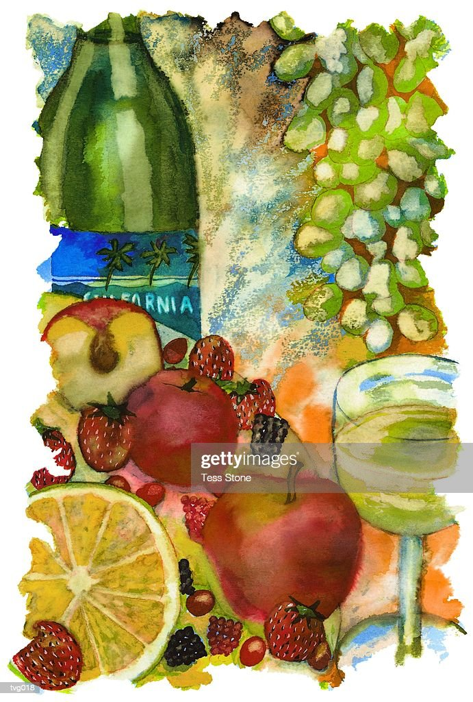 White Wine & Fresh Fruit : Stock Illustration