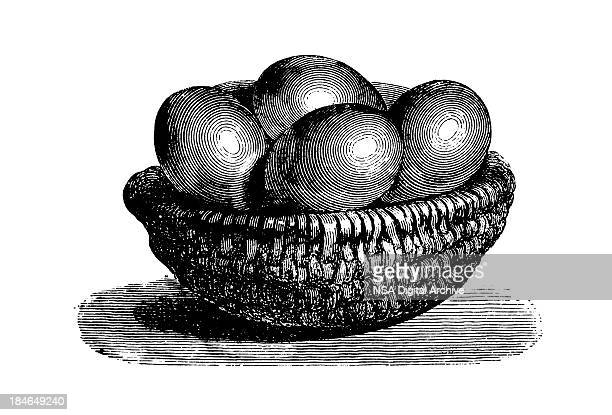 Wicker bowl with eggs | Antique Culinary Illustrations