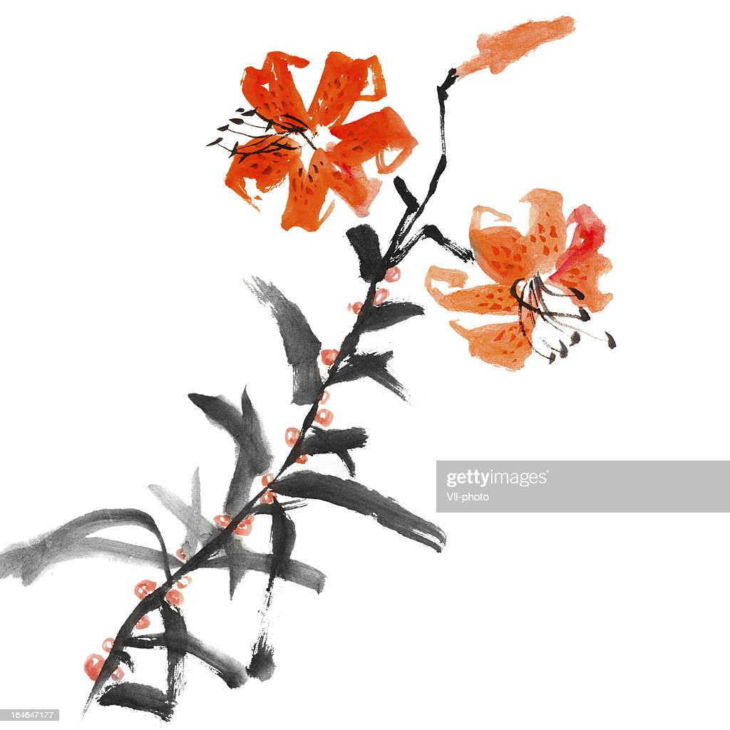 Wild Lily Flowers Stock Illustration Getty Images