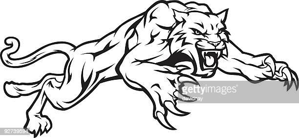 wildcat pouncing black & white - wildcat animal stock illustrations, clip art, cartoons, & icons