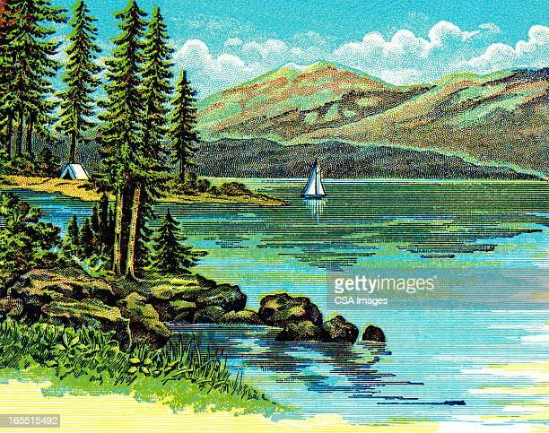 wilderness landscape - wilderness stock illustrations
