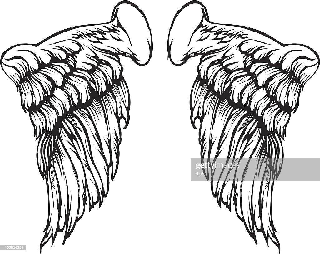 Wings : stock illustration