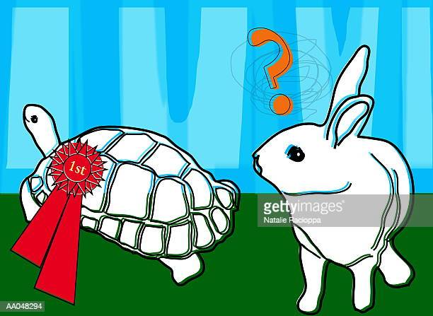 Winning tortoise and puzzled hare