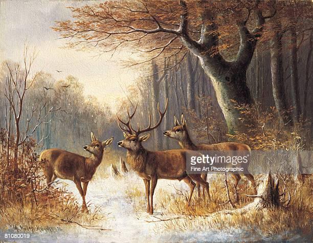 winter alert - stag stock illustrations
